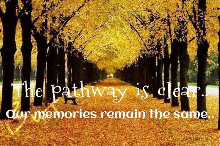 The streets with lonely pace.. Autumnal Colours Pathway To My Secret Garden Yellowmagic Quote (:..