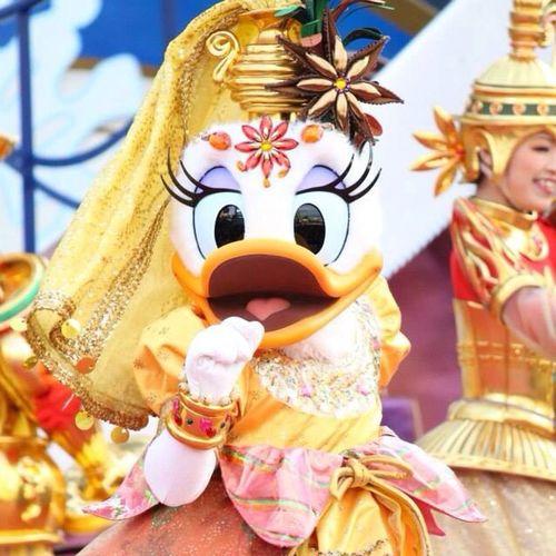 Disneychristmas Daisyduck Tableiswaitting Tokyodisneysea