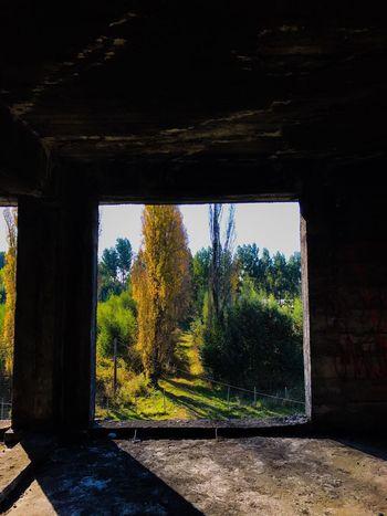 Hospital viejo, Osorno