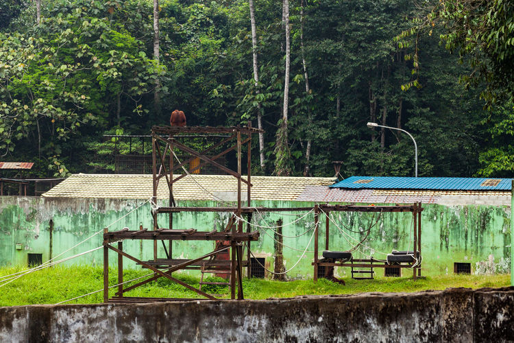 View of playground in forest