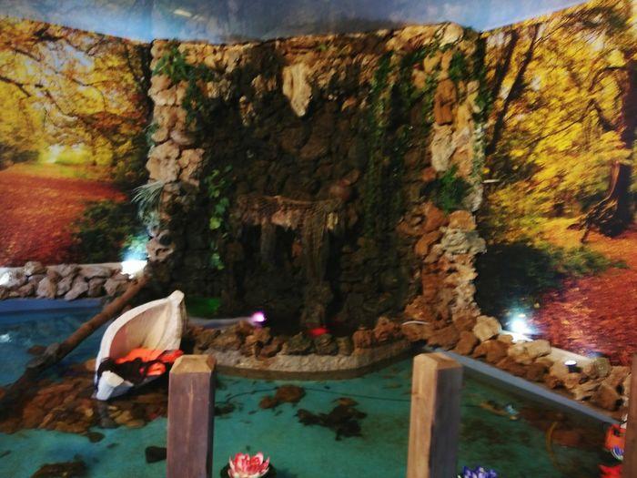 Fish Pool Water
