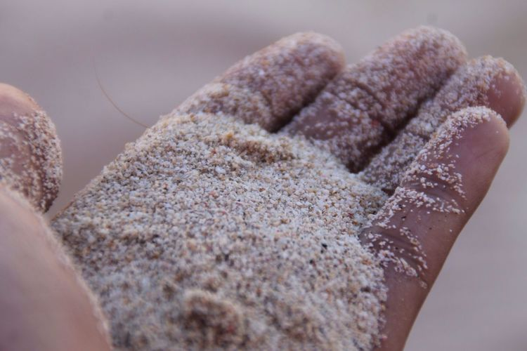 Beach Human Hand Close-up Human Body Part Real People One Person Day Sand ASIA Tropical Sea The Week On EyeEm EyeEmNewHere