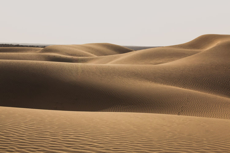 Sand dune in desert against sky