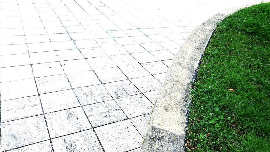 Xyz Space Tangente Cartesianplane Geometry Geometry Pattern Curves Urban Green Tiles White Grass Parabola