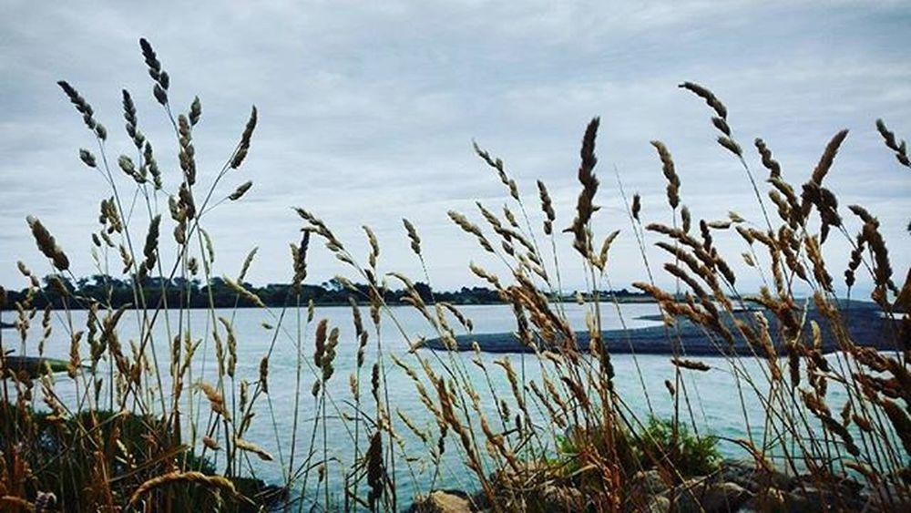 Beach Haumoana NZ Newzealand As_archive Rebelsunited_nature Rsa_nature Ig_masterpiece Tt_rt_nature Universalviews Natureromantix Ig_globalclub