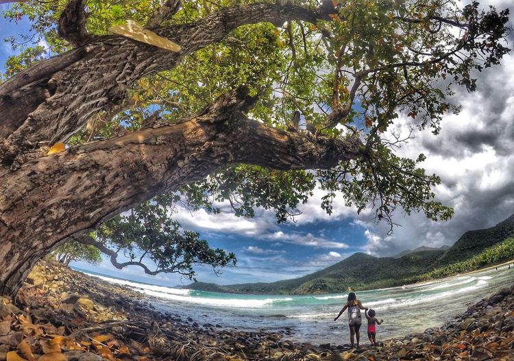 Tree Nature Beauty In Nature One Person Vacations One Man Only Outdoors People Sky Philippines Happiness Nature Palawanadventures Palawan Philippines Nature Photography Beauty In Nature Scenics