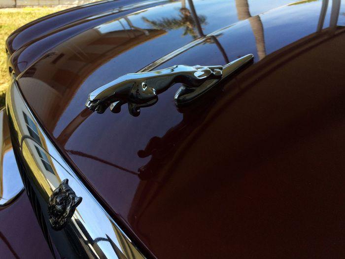 Jaguar XJ8 Precision Precision Engineering Jaguar XJ8 Cars Details Eyeem Missions