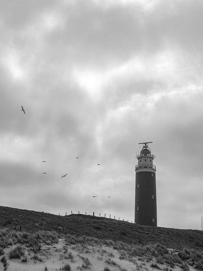 Birds flying over lighthouse against sky