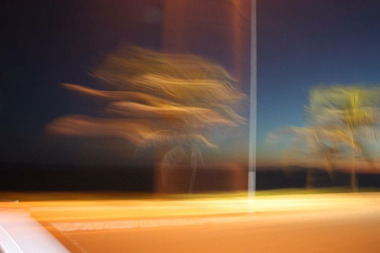 Photography In Motion trees motion fast driving