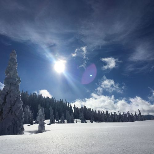 Panoramic shot of snowcapped landscape against sky