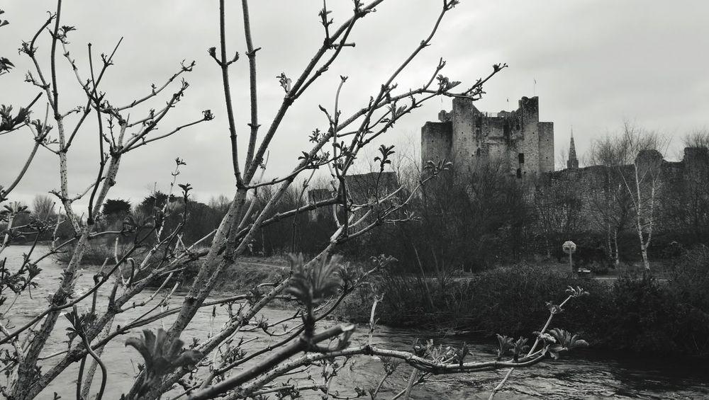 Castle Trim Castle Ireland Ireland🍀 Irlande Château Trim Braveheart Pont River Tree Bare Tree Water Winter Sky Bridge Bridge - Man Made Structure Footbridge Dead Plant