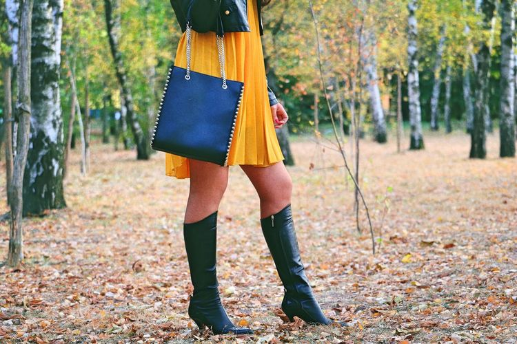 Low section of woman standing at park during autumn