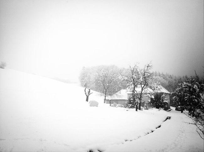 Winter Snow Rural Scenes WeatherPro: Your Perfect Weather Shot