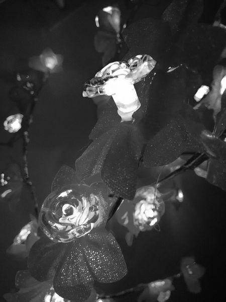🎅🎅MerryChristmas Xmas Decorations Xmas Feliznatal