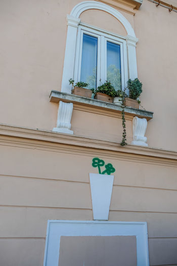 Built Structure Architecture Building Exterior Potted Plant Plant Building Window House No People Low Angle View Nature Growth Day Outdoors Residential District Wall - Building Feature White Color Door Flower Flower Pot Houseplant Flower Arrangement