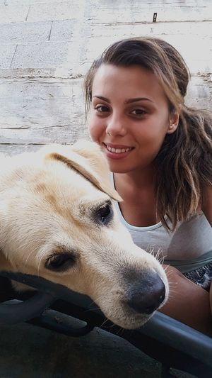 Adam_e_Eva Lovemylab Amicomio Amoremio Labrador Dogslife Dadamino