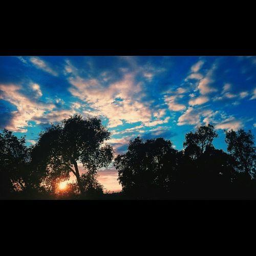Mais um domingo que está a acabar 😏 Sunset Inverno Winter ☀ P3 Cielo Sun Sol Skywinter Céu Clouds Nuvens Xperiaindepth