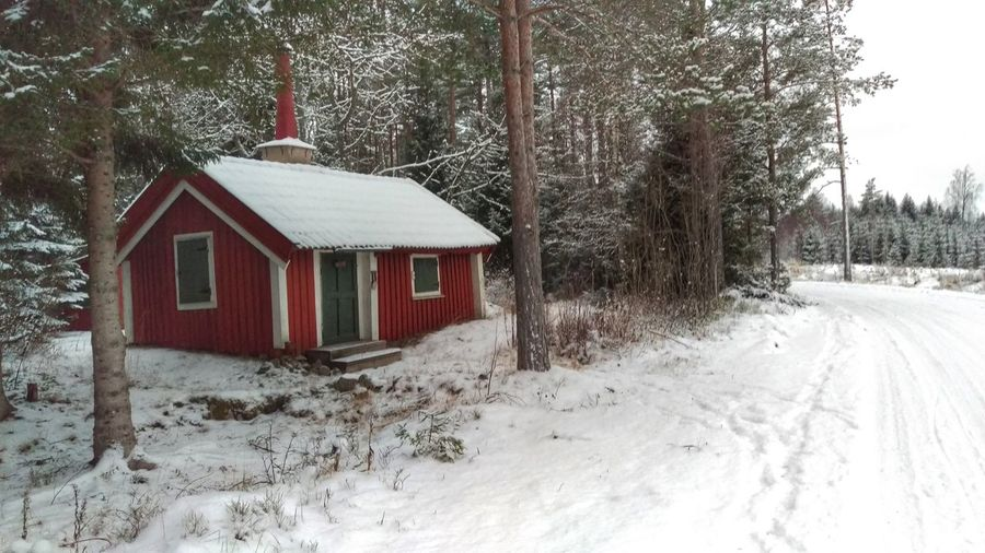 It's Cold Outside House Red Forest In The Forest Kolmården Nature Snow ❄ Snow Northern Europe Scandia Scandinavia Sweden EyeEm Gallery Winter January View Snow Covered Winter Scene Trees