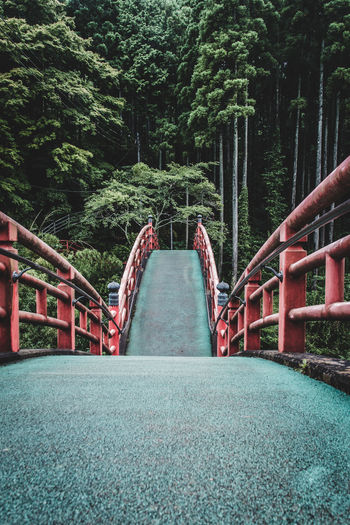 Drastic Edit Japan Lovers Nature Naturelovers The Journey Is The Destination EyeEm Gallery Fresh On Eyeem  Japan Perspective Railing Red Tranquility Travel Trees Architecture Atmospheric Mood Beauty In Nature Bridge Day EyeEm Best Shots Forest Getting Inspired Outdoors Slope Summer The Week On EyeEm