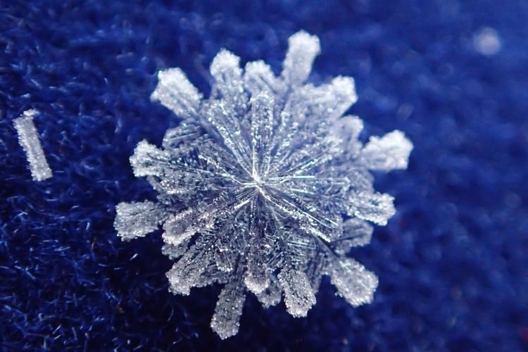 Close-up of ice crystal