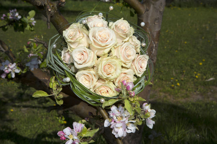 Beauty In Nature Bouquet Brautstrauss Bunch Of Flowers Close-up Day Flower Flower Arrangement Flower Head Fragility Freshness Nature No People Outdoors Rose - Flower