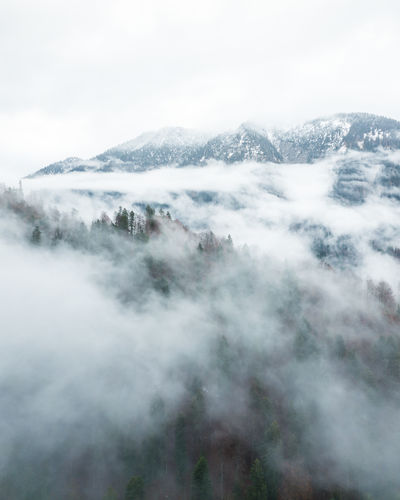 Moody forest captured with a drone. My Best Photo Fog Beauty In Nature Tranquil Scene Tranquility Scenics - Nature Day Environment Nature Land No People Mountain Non-urban Scene Sky Landscape Outdoors Hazy  Mood Forest Haze Cloud - Sky Smoke - Physical Structure Mountain Range Idyllic Power In Nature