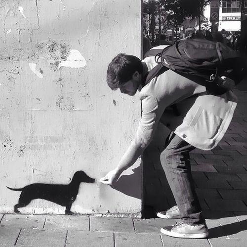 Urban dog Repost הכניסה שלי לאתגר תל_אביב_שלי Insta_telaviv