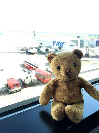 Let's go to Taiwan...^^ Hello World Taiwan Janietrips Enjoying Life V Air Holiday Vacation Taking Photos Mymheegoeverwheres My Bear Story Mybear