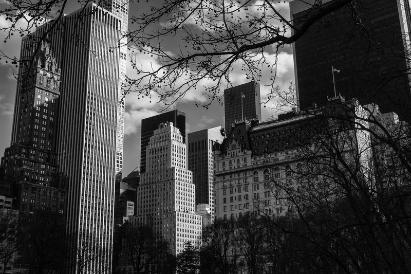 New York view from Central Park. Hotel Central Park Arhitecture Big City Cityscape EyeEmNewHere New York USA Architecture Artistic Photography Big Apple Black And White Building Building Exterior Concrete Jungle Famous Place Financial District  Iconic Buildings Iconic Landmark Modern New York City Photos Place Skyscraper Tower View From Above