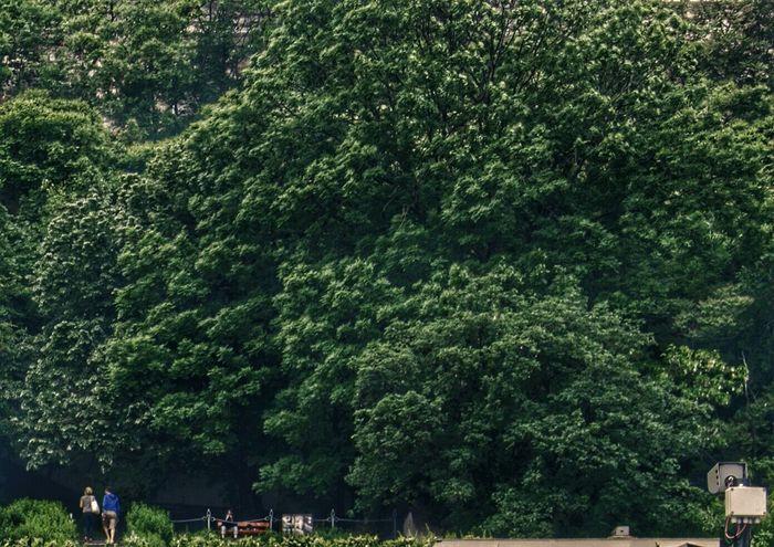 Wearenotalone Naturephotography Openeyes NormalLife Observingpeople WatchOver