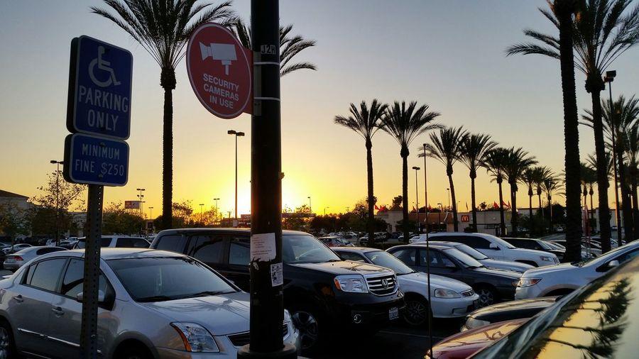BaldwinPark  Sunset MyLAstory Parkinglot TheWeekOnEyeEM