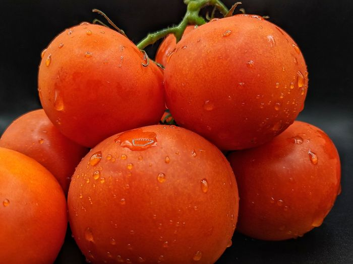 Close-up of wet tomatoes against black background