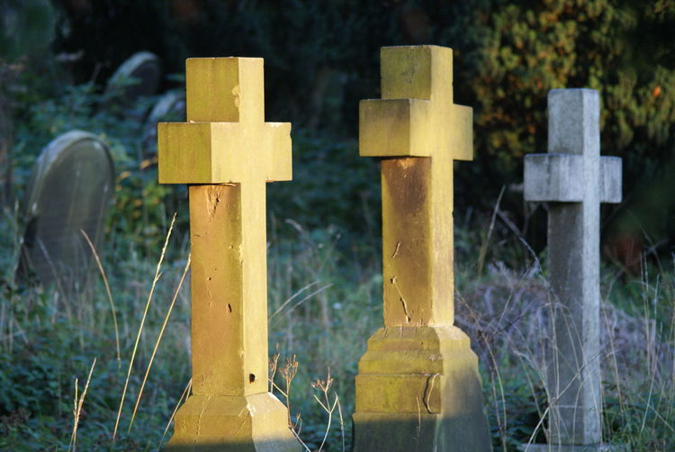 Close-up of tombstones at cemetery