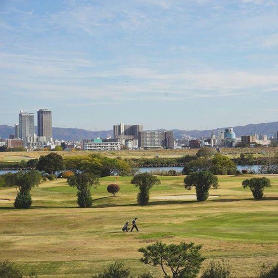 ブロッコリでかっ!!(・∀・) . 淀川河川公園 大阪 Riverside OSAKA Osakawalk Japan Autumn Autumnlove Sky Golf