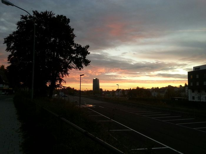 Morning walking