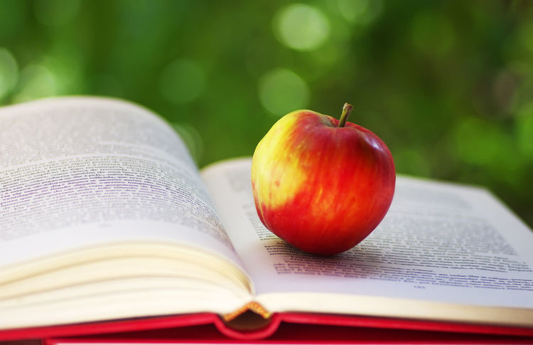 Red apple with open book on green background Apple - Fruit Book Close-up Education Food And Drink Healthy Eating Indoors  No People Open Page Publication Red Selective Focus Still Life Studying Textbook