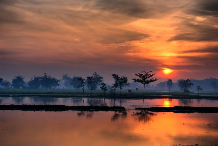 Silhouette Light And Shadow Shadow Shape Shapes And Forms Shadow In The Water Nature View Nature Photograhy Yellow Tones Evening Sunset Evening Sun Sunset Evening Light Nature Photography ใน Thailand