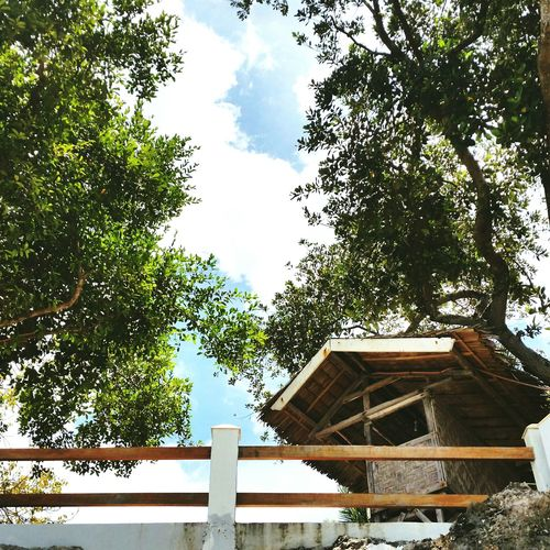 Nature never goes out of style. Trees Clouds Nipa Hut Naturelover EyeemPhilippines Relaxing Checkthisout! Green