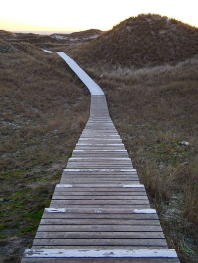 Boardwalk between the Dunes of Amrum Landscape The Way Forward No People Nature Tranquility Scenics Outdoors