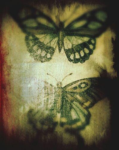 ...faded butterflies... Faded Butterflies Smearedbeauty Smudged Beautiful Butterflies EyeEm Gallery Eyeemphotography Sony Xperia Beautiful World Feeling Artsy Flutterby Butterfly I 💚 Butterflies Butterfly Effect Butterflyporn