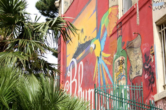 Mural painting, Marseille Architecture City Colors Graffiti Marseilles Multi Colored Mural Paintings No People Parrot Red Rum Spray Paint