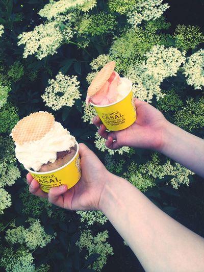 Ice Cream Nomnomnom Food Porn Summer