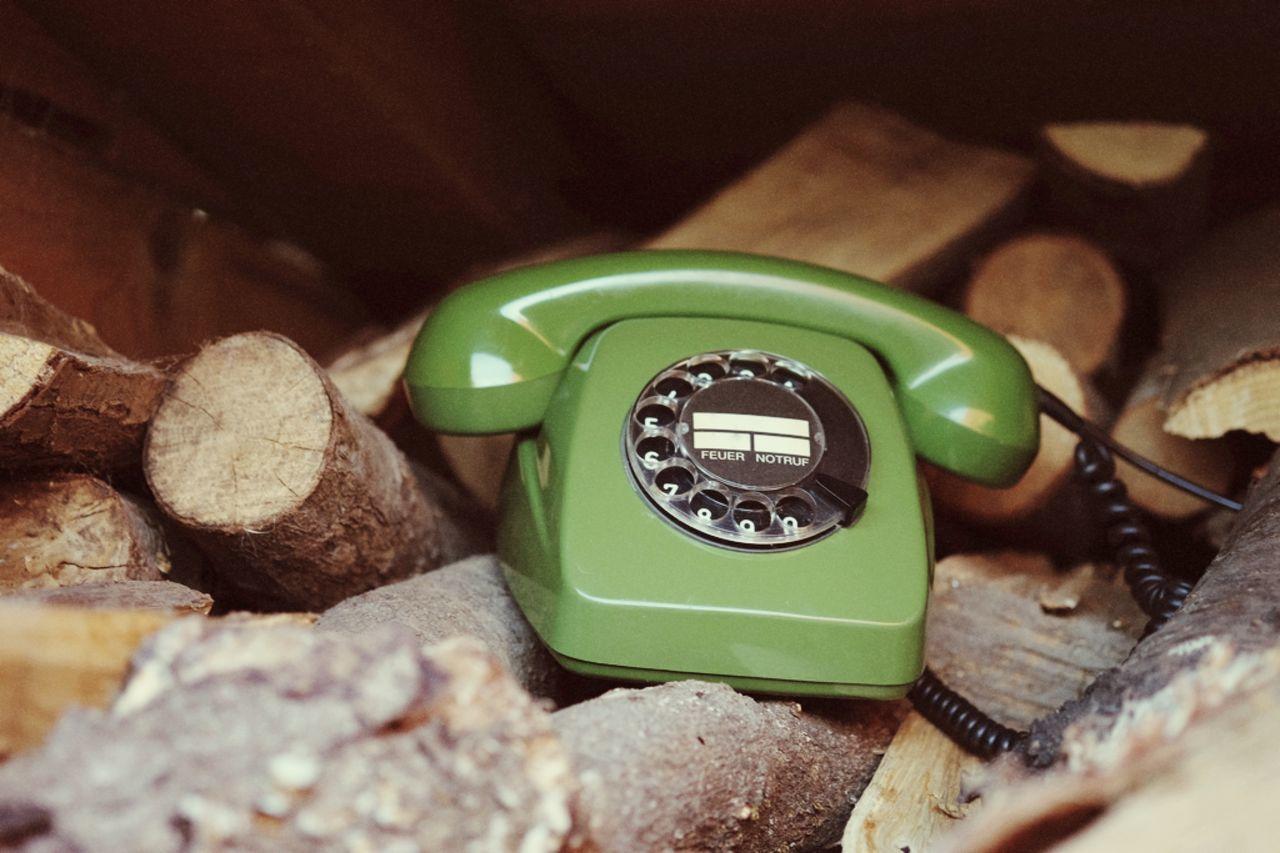 Vintage Green Telephone On Logs
