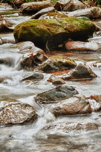 flowing stream Beauty In Nature Blurred Motion Day Flowing Flowing Water Forest Idyllic Moss Motion Nature No People Non-urban Scene Outdoors Remote River Rock Rock - Object Rock Formation Scenics Stone Stream Tranquil Scene Tranquility Water Waterfront