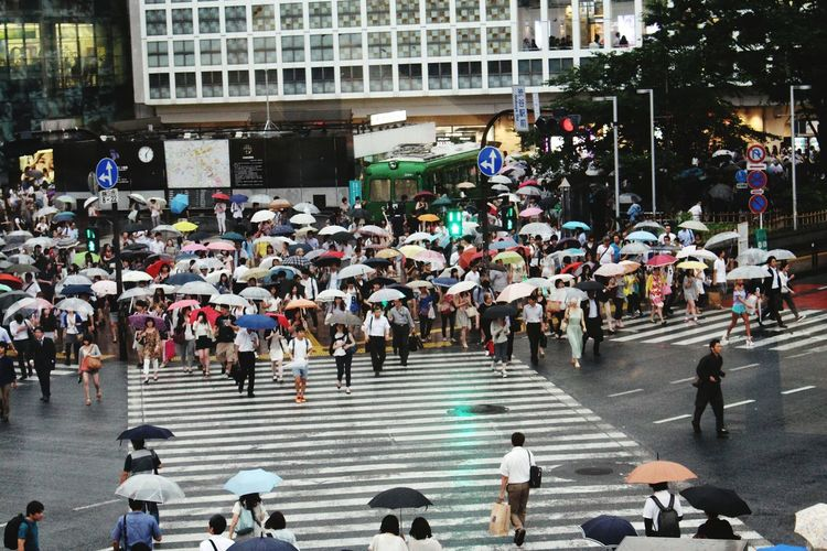 High angle view of crowd walking on zebra crossing during rainy season