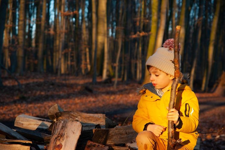 Cute boy with firewood sitting against trees in forest during sunset