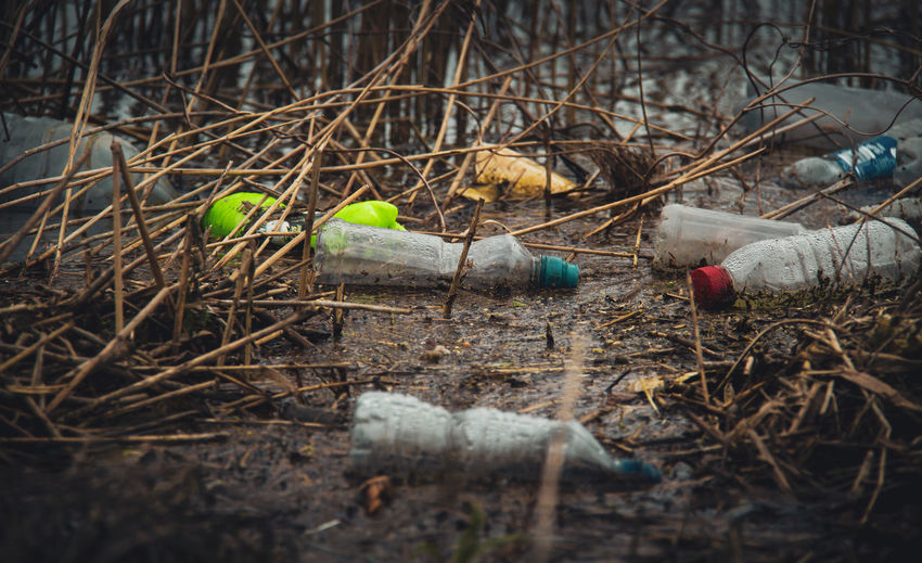 I decided to take a walk along the banks of the majestic River Thames, at Sonning-on-Thames. This place is home to mega stars such as George Clooney... home to World Leaders such as Theresa May.... and yet this place is as disgusting as anything you would see documented as third world problems. Hundreds of plastic bottles, plastic pens, plastic containers, plastic plastic plastic... littered the reed beds along my short walk. How sad... how totally sad that human beings have become mindless, numb, selfish, ignorant, uncaring individuals.... so wrong.... so dam wrong. I will be making a little vlog or even a dedicated channel for youtube if you wanted to see it. Starting a new channel. Leave a comment and i will let you know the channel name so you can follow... if interested. Plastic Bottles Plastic Bottles In River Pollution In My World River Pollution River Thames Close-up Day Environmental Damage Environmental Issues Garbage Nature No People Outdoors Plant Plant Part Plastic Plastic Pollution Plastic Waste Pollution Selfish Skyoceanrescue
