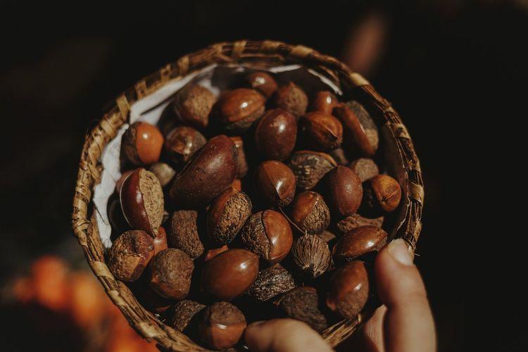 seeds Basket
