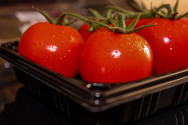 Close-up of wet tomatoes