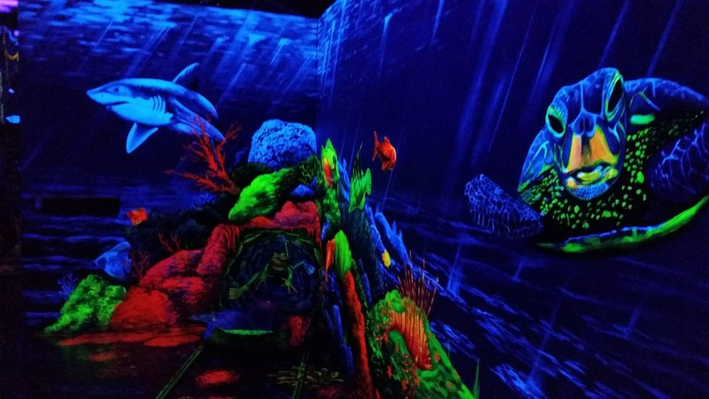 Blacklight snd 3D Minigolf Water Sea Life Underwater Animal Themes Fish Side View Indoors  Multi Colored Swimming Exploration UnderSea Zoology Vibrant Color Colorful Sea Full Frame Taking Photos Hello World Minigolf Minigolfcourse Blacklight Paint Blacklight EyeEm Ready